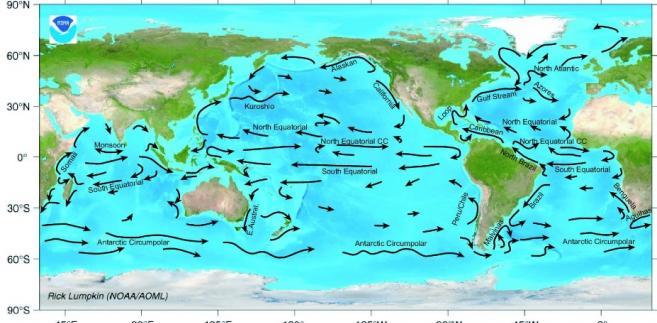 Aktualna mapa prądów morskich. Źródło: NOAA, domena publiczna