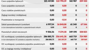 Polski rynek ubezpieczeń direct