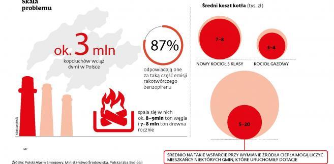 Problem smogu i starych kotłów w Polsce