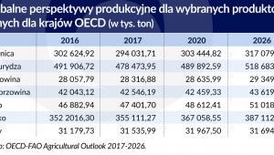 Perspektywy produkcyjne (graf. Obsewator Finansowy)