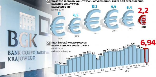 Środki walutowe do dyspozycji rządu