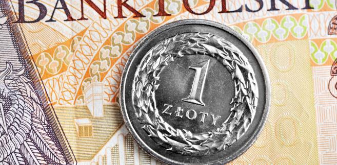 złotówki, pieniądze, złoty