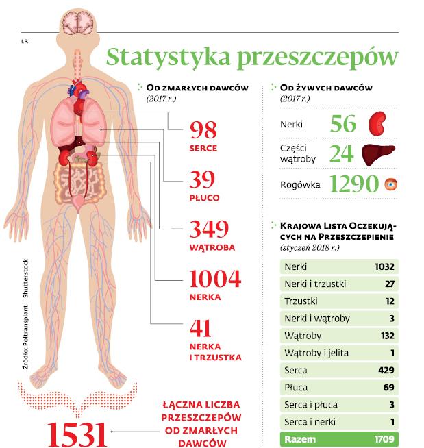 Statystyka przeszczepów